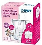 BWT Penguin Blanca Pack 6 filtros - Jarra filtradora de agua con marcador electrónico + Pack 6 filtros con magnesio además...